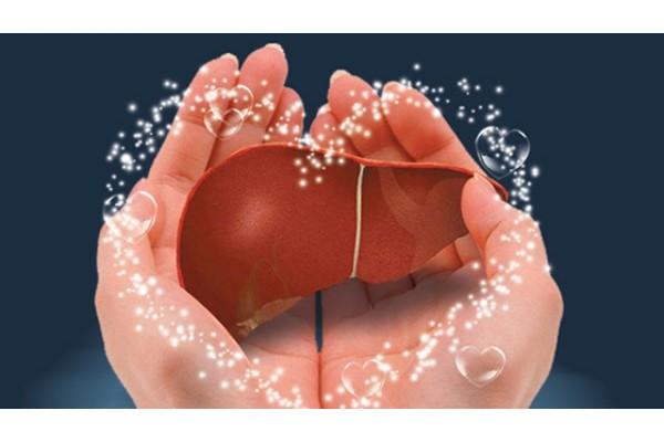 百病从肝治:肝脏保健方法汇总