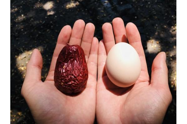 正宗的和田大枣好在哪,除了和鸡蛋一样大,其他的你知道吗?