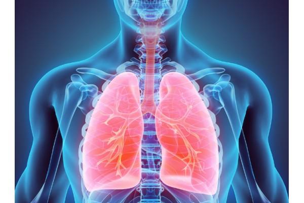 在这个时期,养肺是关键!